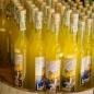 limone-sul-garda2