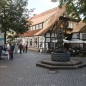 tecklenburg07