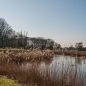 smerdiek-tholen-3-2013-026